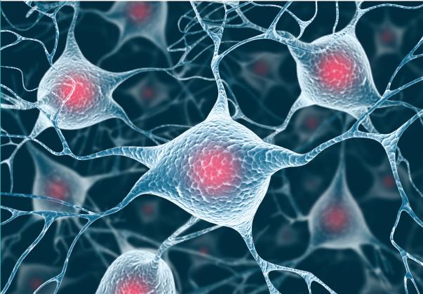 Tratamiento con células madre