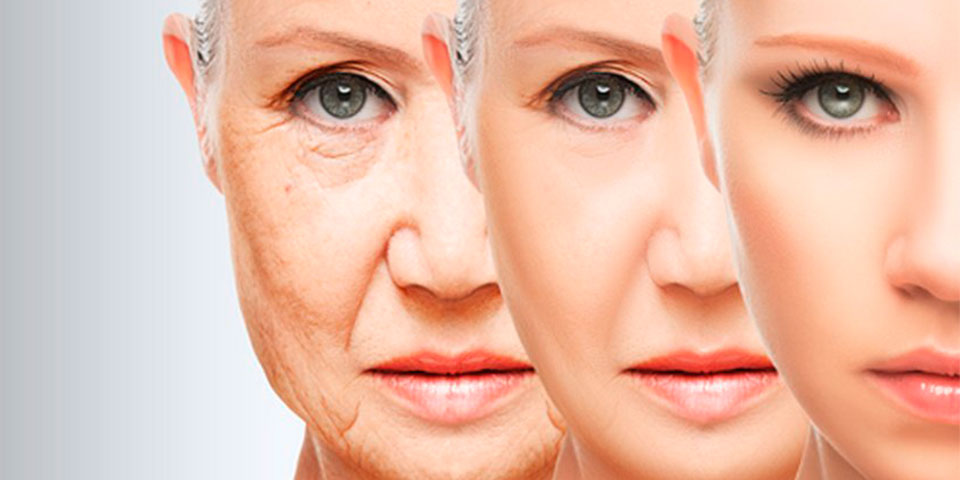 Nutricosmetica antiaging